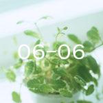 2016年3月〜4月-1 経過観察-3 &ウォーキングと温泉