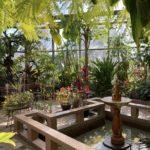 鶴舞公園の温室