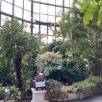 庄内緑地公園の温室
