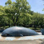 公園のクジラ